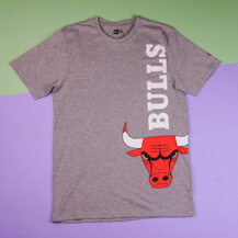 Футболка New Era NBA Chicago Bulls T-Shirt / grey