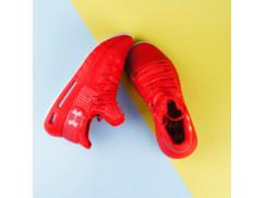 Мужские кроссовки Under Armour Hovr Havoc Low, Red