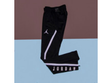 Штаны Air Jordan Dry 23 Alpha Training  / black, white