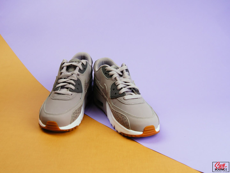 Женские кроссовки Nike Air Max 90 Leather SE / Atmosphere Grey