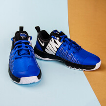 Детские кроссовки Nike Team Hustle Quick, Game Royal/White-Black