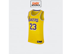 Джерси Nike LeBron James LAL Icon Edition / yellow