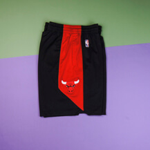 Шорты  Nike Dry NBA Practice Short Chicago Bulls, black/red