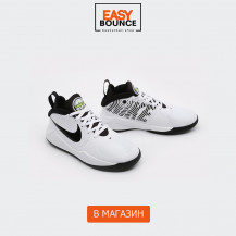 Кроссовки Nike Team Hustle D 9 GS / white