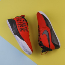 Кроссовки Nike Team Hustle D 9 GS / University Red/Black-White