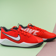 Детские кроссовки Nike Team Hustle Quick 2 / red