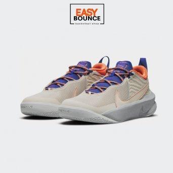 Кроссовки Nike Team Hustle D 10 SE / desert sand