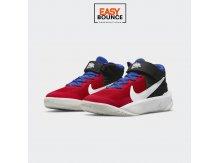 Кроссовки Nike Team Hustle D 10 FlyEase / red, black
